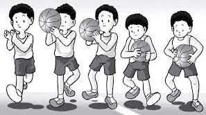 Bola Basket Cara Menangkap Bola Basket Dengan Baik Dan Benar Penjaskes Co Id
