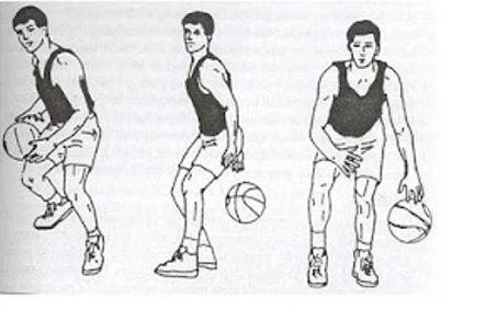 Dribbling Bola Basket Pengertian Dribbling Bola Basket Dan Cara Melakukannya Penjaskes Co Id