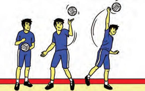 Servis Bola Voli Pengertian Macam Dan Cara Melakukan Servis Bola Voli Penjaskes Co Id